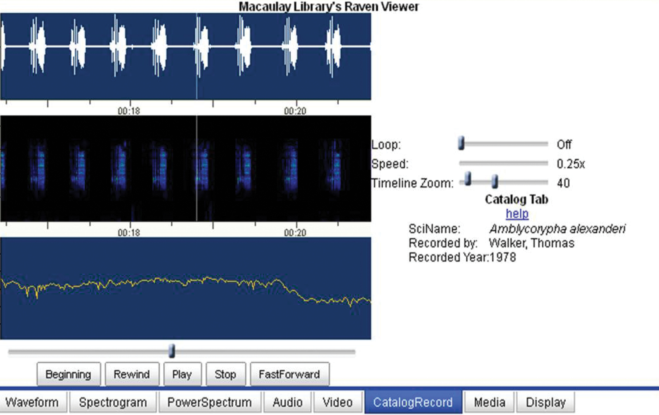 Acoustic profiling of Orthoptera: present state and future needs
